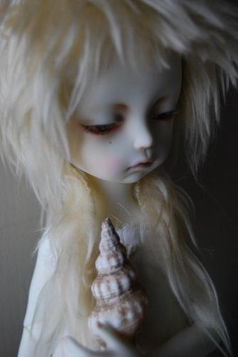 tsuki-shell7.jpg