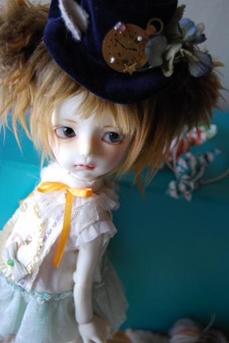 zg2nd-camellia2.jpg