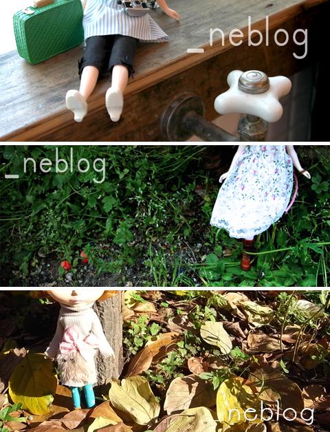 neblog_top_arcaive2.jpg