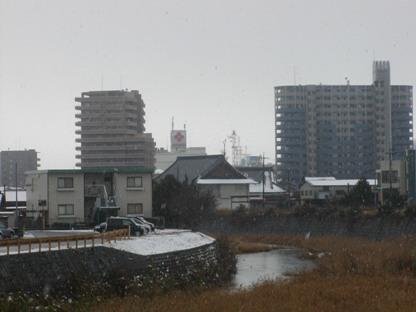 2011正月 (8)
