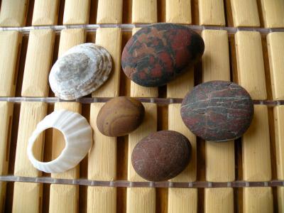 久之浜の石・チャートと貝
