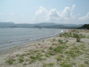 陸前高田の海
