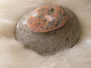 シロさんと石