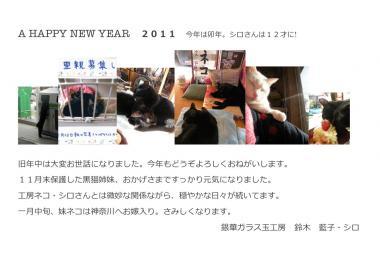 2011newyear