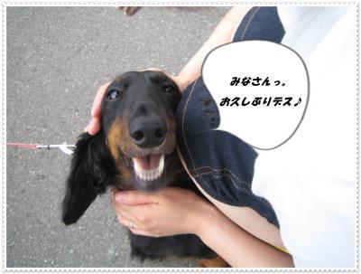いい笑顔だねっ!らんちゃんてば。