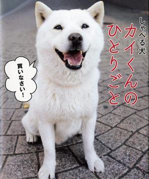 有名!有名!!チョー☆有名っ!!ソフトバンク「白戸家のお父さん」。