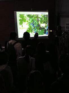 07-3河内ワイン (2)