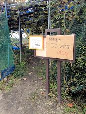 カタシモ02畑外観 (2)