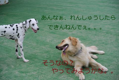 010+-+繧ウ繝斐・_convert_20120521010431
