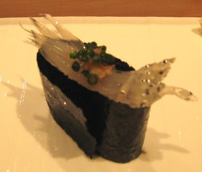 shirauo11.jpg