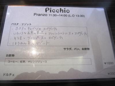 picchio01.jpg