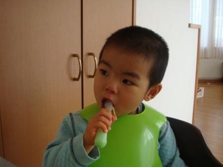 tora2_convert_20101231152922.jpg