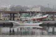 14日 北茨城市平潟港の津波被害2