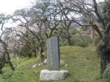 2011/3/30 偕楽園内(外から)2