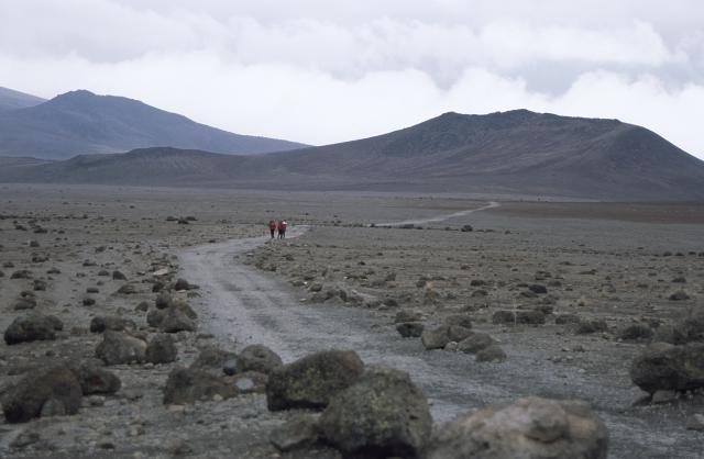 kilimanjaro0227_convert_20140927072332.jpg