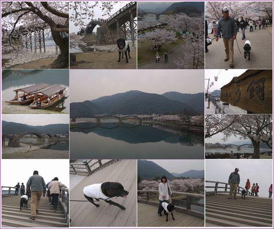 4-10 280 錦帯橋