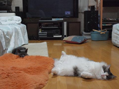 雑然(2010.03.17)