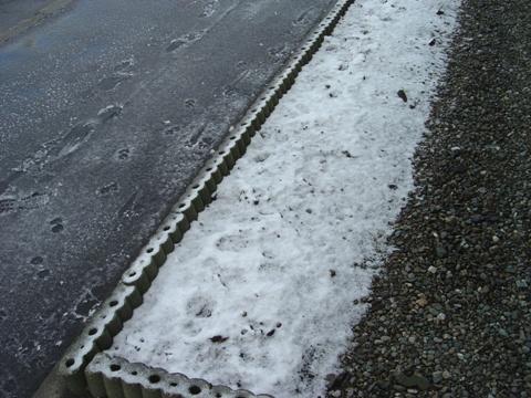 雪が降った...(2010.04.07)
