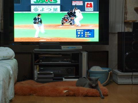 嗚呼03(2010.04.13)