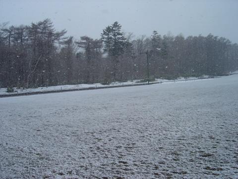 雪が降った!(2010.04.14)