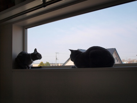 「ニコライの窓」の銀ブラ04(2010.05.03)