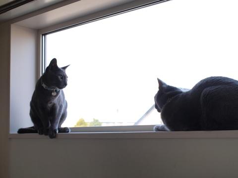 「ニコライの窓」の銀ブラ05(2010.05.03)