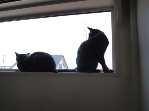 続「ニコライの窓」の銀ブラ10(2010.05.03)