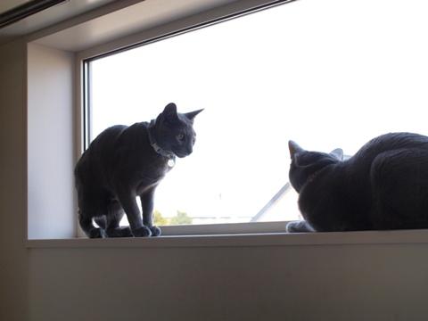 続「ニコライの窓」の銀ブラ05(2010.05.03)