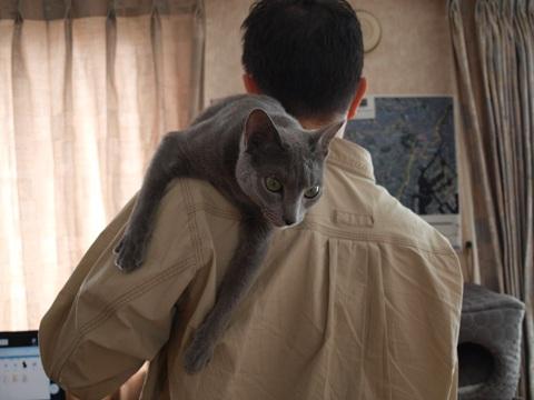 甘えん坊ニコ02(2010.05.05)