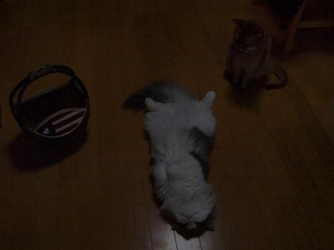フレイヤについて語る04(2010.05.12)