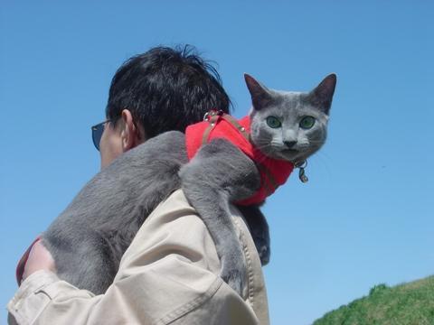 行くにゃ!(2010.05.22)