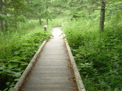 女神湖とその周辺03(2010.08.06)