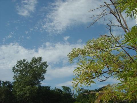 暑いいちにち03(2010.08.30)