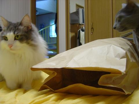 袋好き03(2010.08.31)
