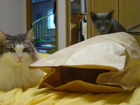袋好き07(2010.08.31)