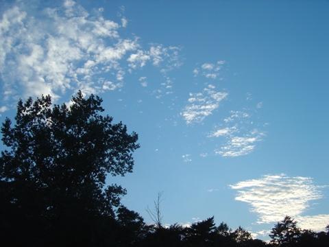 夏秋空02(2010.09.01)