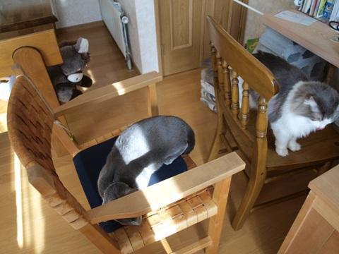 椅子取りゲーム06(2010.09.27)