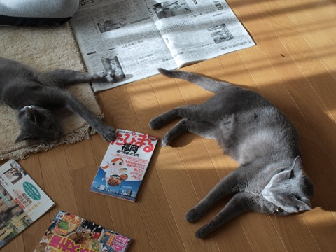 銀ブラまったり(2010.10.07)