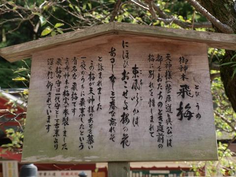 大宰府09(2010.10.10)
