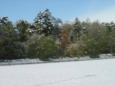 雪景色の職場風景(2010.10.27)