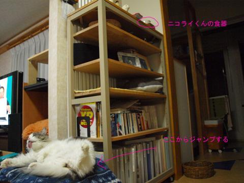 いつもへそ天04(2010.11.07)