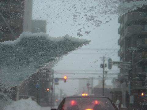 お外の様子02(2010.12.18)