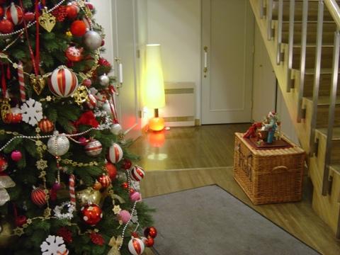 我が家のクリスマス04(2010.12.27)