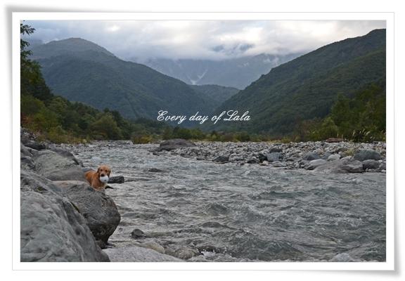 白馬の川へ201409