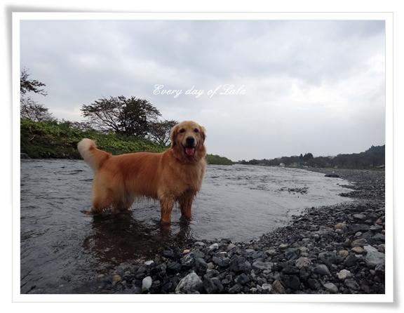 まだまだ川遊び201410