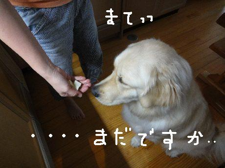 変換 ~ DSC00946