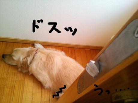 変換 ~ NCM_0299