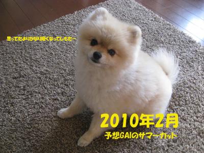 IMG_4663のコピー