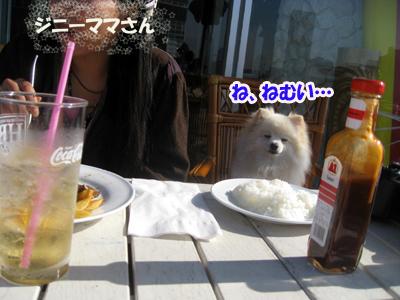 IMG_4914のコピー