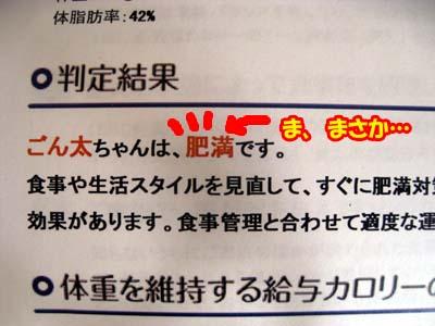 IMG_7803のコピー